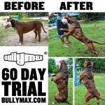 Before & After 60 Day Trial