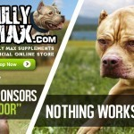 bully max supplements for dogs