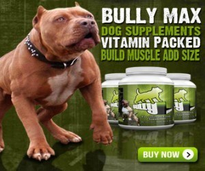 pit bull supplements