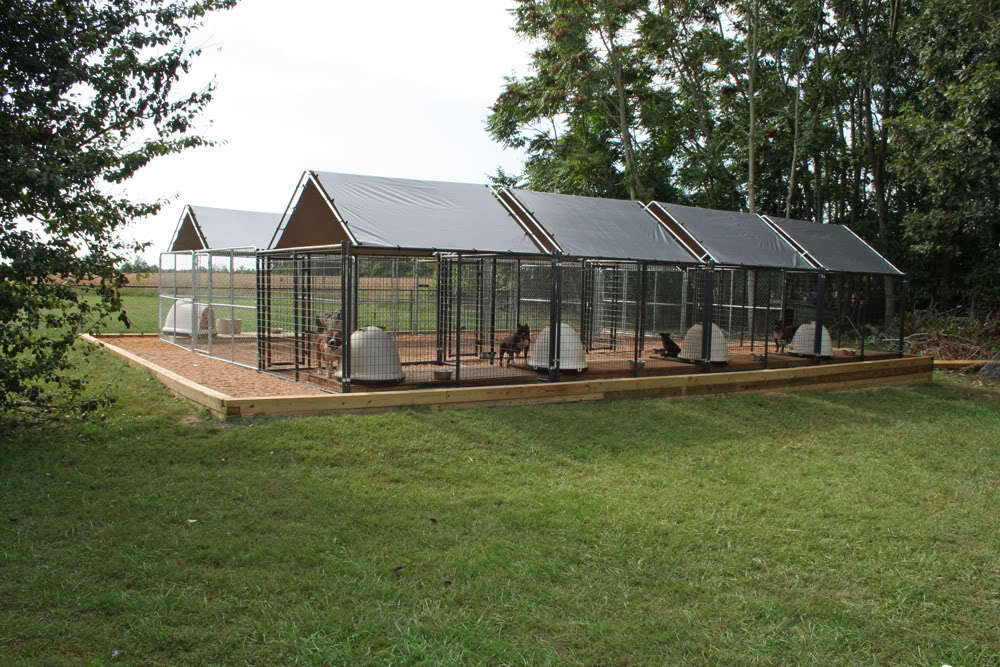 building an american bully kennel