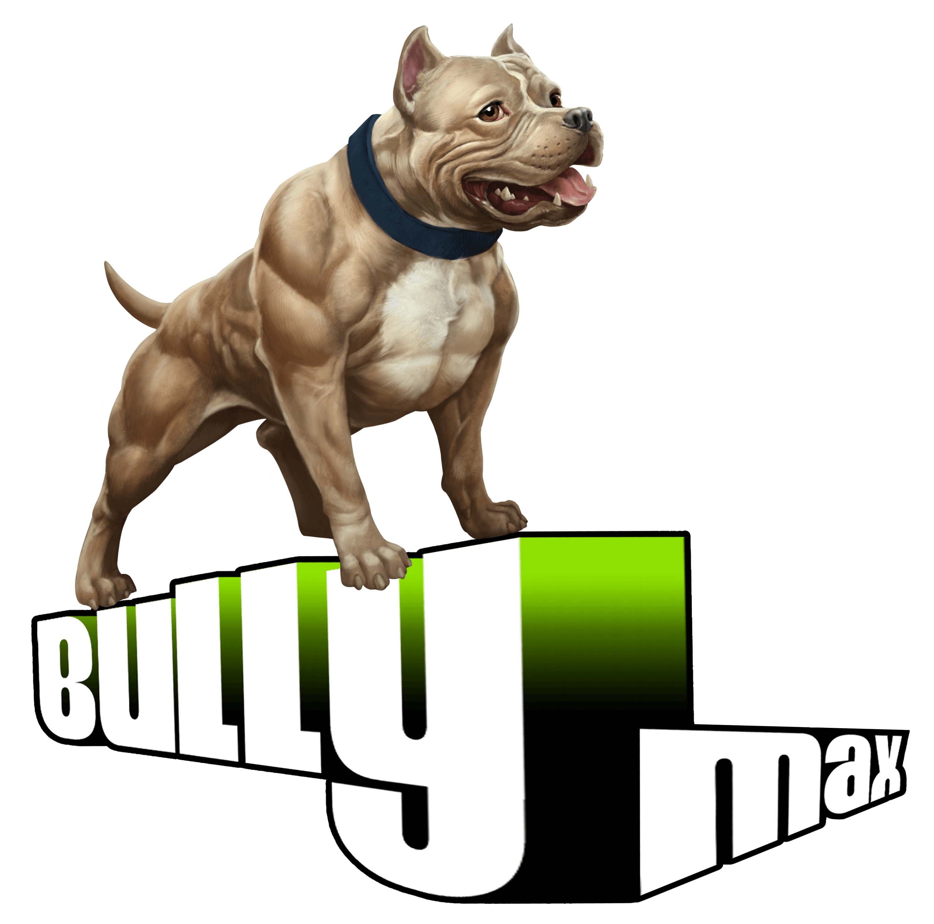 Right Click & Save the Bully Max Official Logo