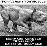bully-max-muscle-supplement