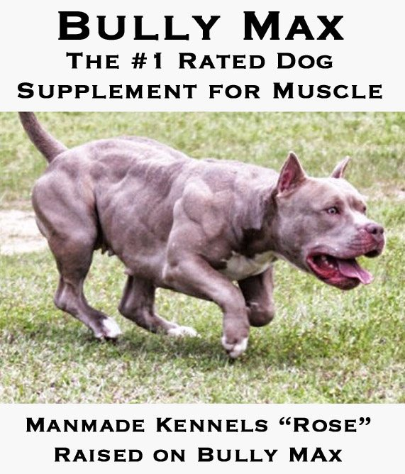 muscle supplement sponsored dogs