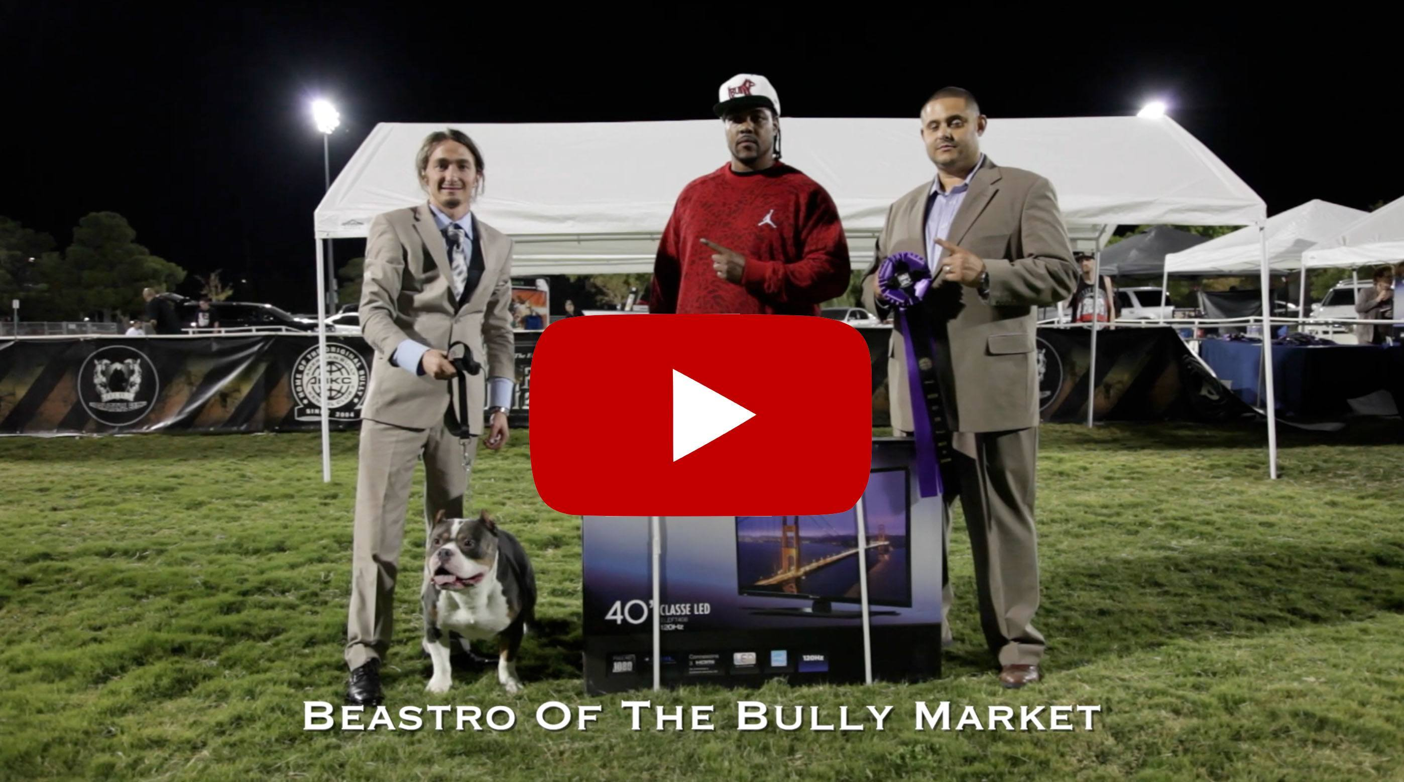 ABKC Show Results 2014 - The Battle of the Bullies