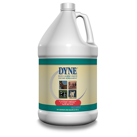 dyne weight gaining supplement for dogs